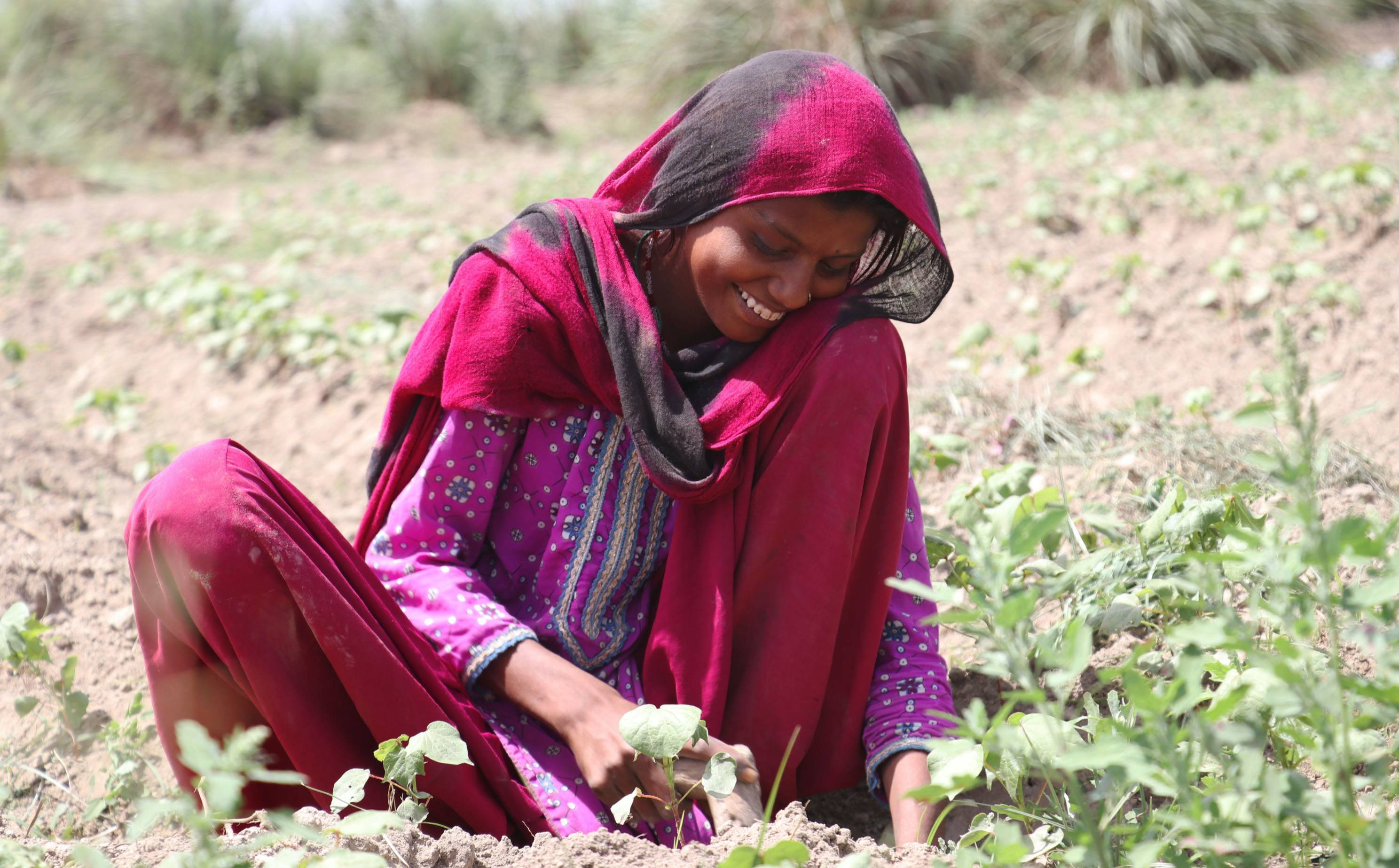 Soorty launches organic cotton initiative