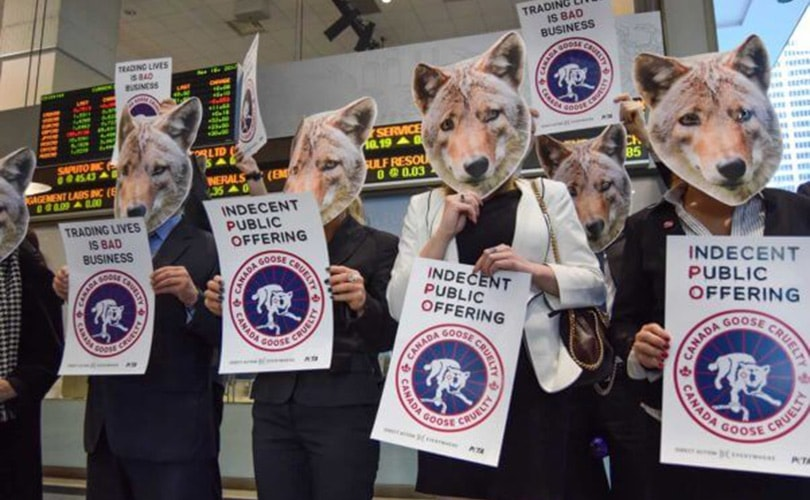 PETA take battles against Canada Goose's animal cruelty to the boardroom